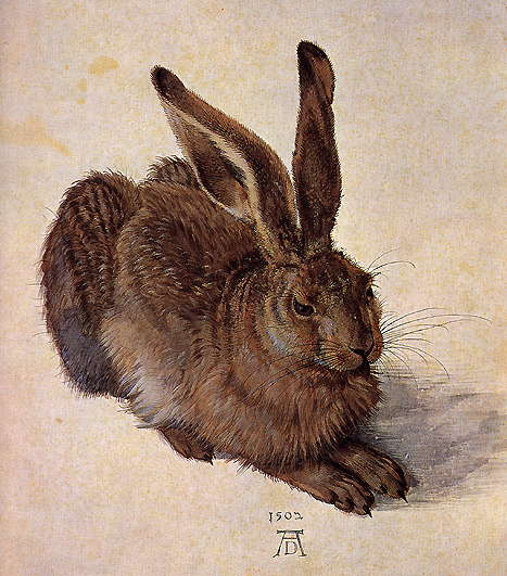 Albrecht Durer: A Young Hare