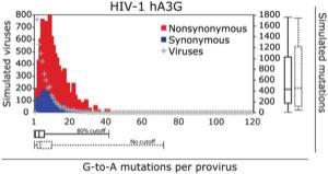 Figure 3, Jern et al