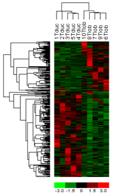 Hierarchical clustering of breast carcinomas, Turashvili et al 2007