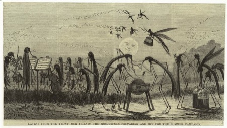 Mosquitoes - Harper's Weekly 1873
